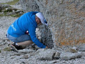 Mikael har givit oss i uppdrag att ta bilder av fossila lämningar.